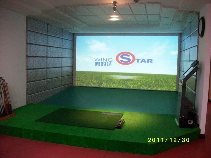 韩国原装进口WS1型模拟高尔夫