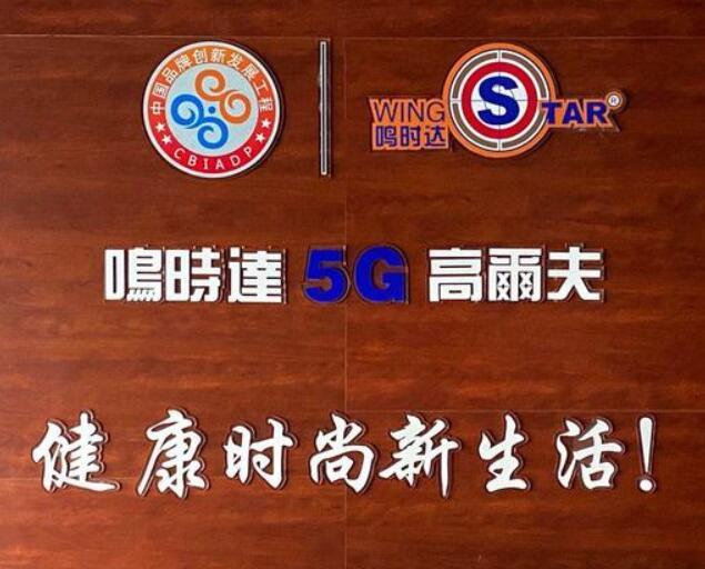 韩国原装进口wingStar-WS5型模拟高尔夫